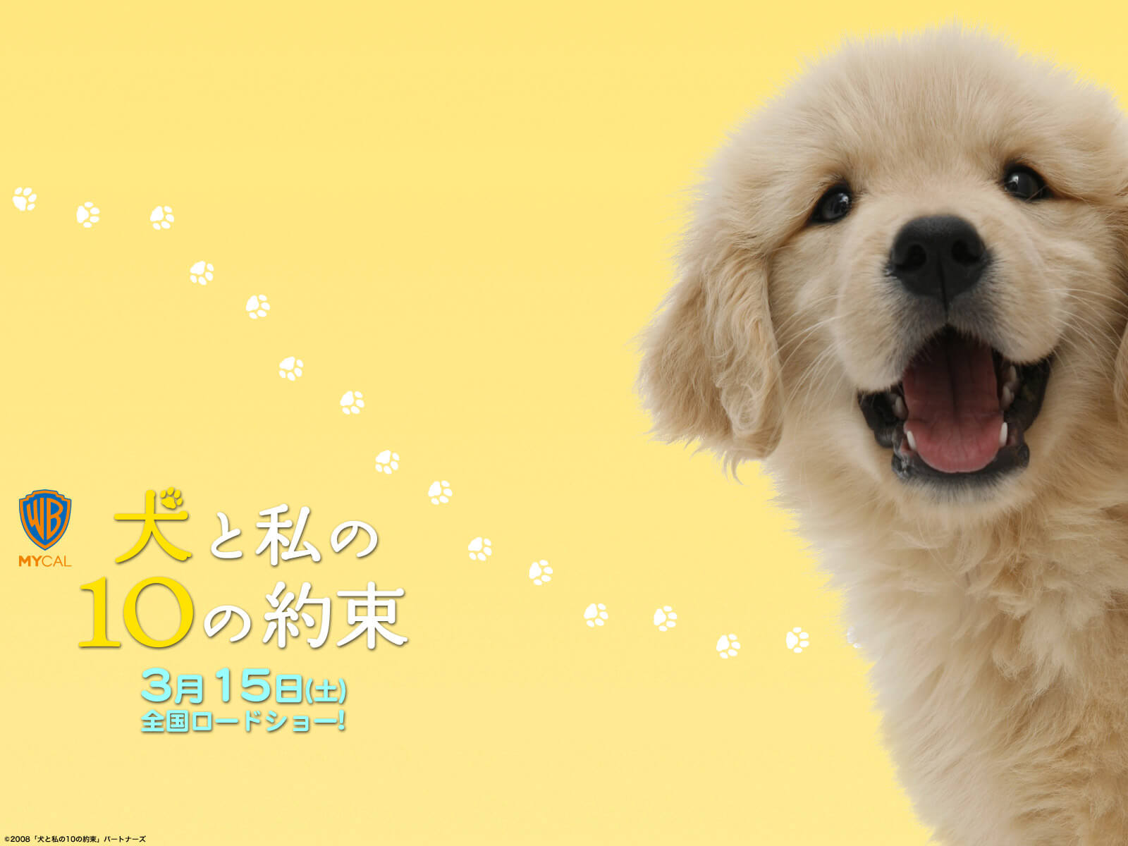 犬の十戒ポスター 子犬 ゴールデンレトリバー