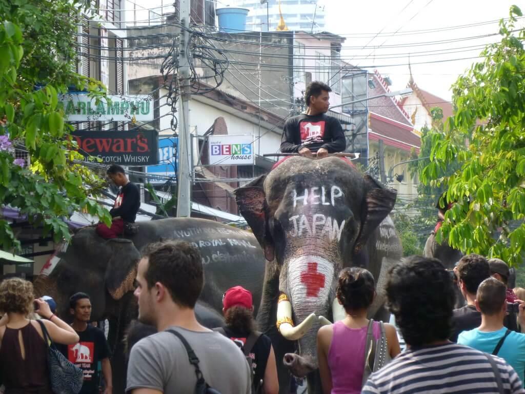 バンコク 東日本大震災 義援金活動 象 禁止