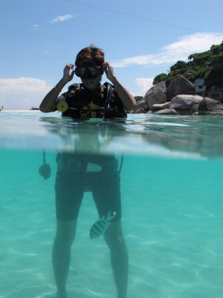 ダイビング Koh Tao 海