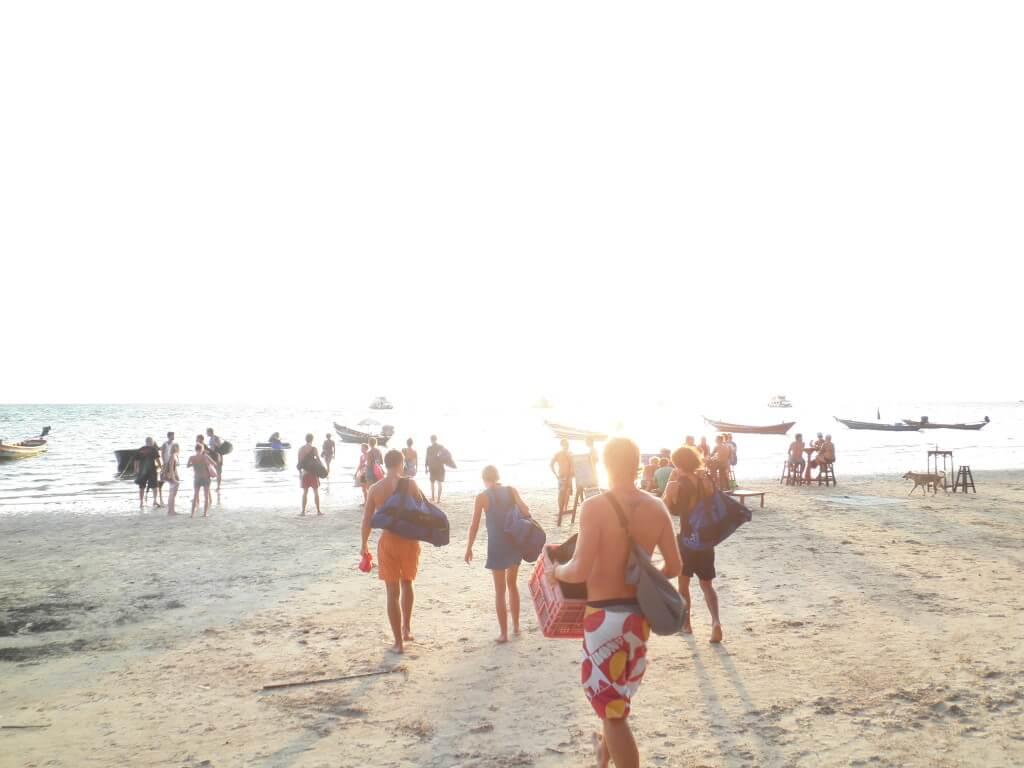 ダイビング タオ島 早朝