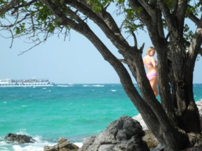 今日の美女 ラン島の木陰の美女