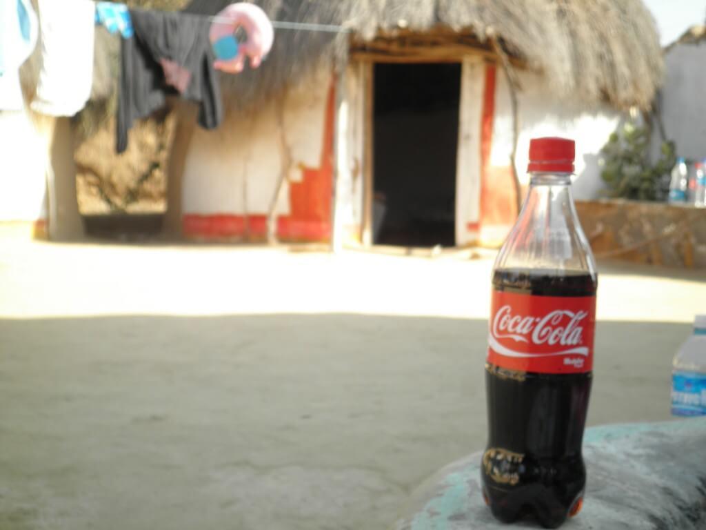今日のコーラ クーリー村にもあったよ!