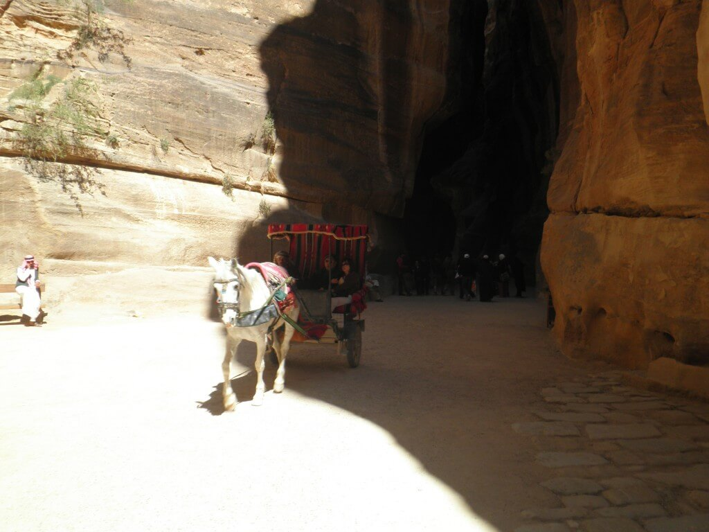 ぺトラ遺跡は広大なんで、馬車、ポニーなどの移動手段