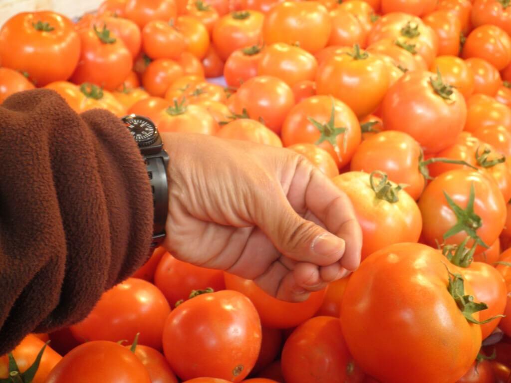 アンマンの街は活気に溢れている!てか野菜がでかい!!