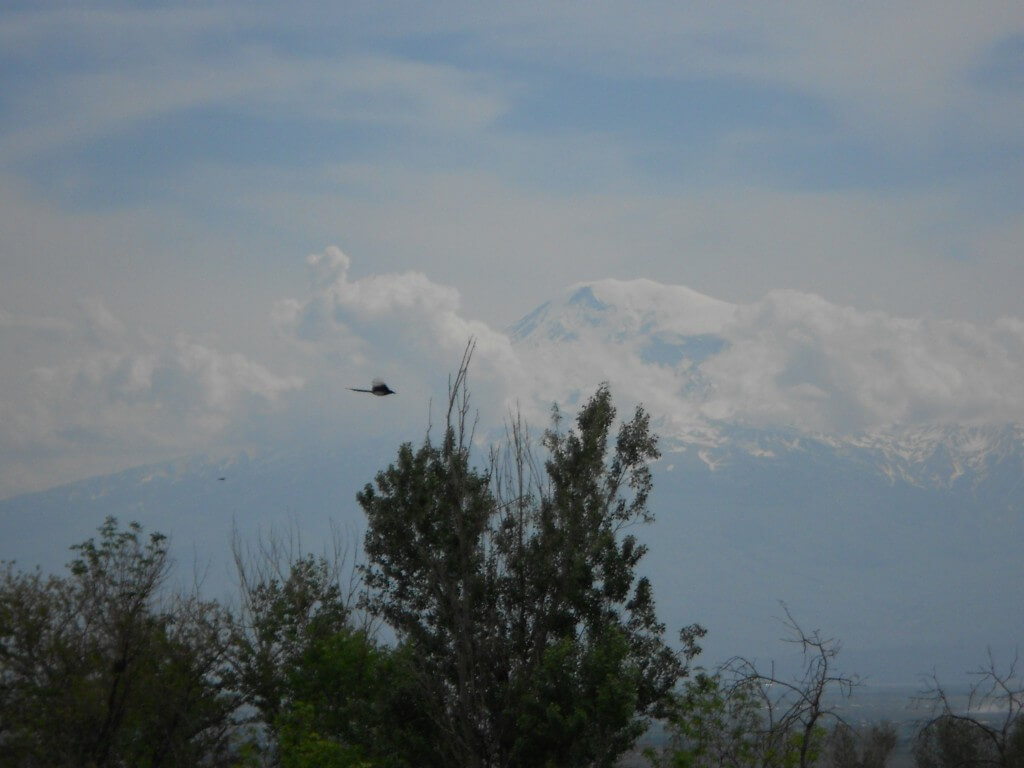 アトス山の画像 p1_39