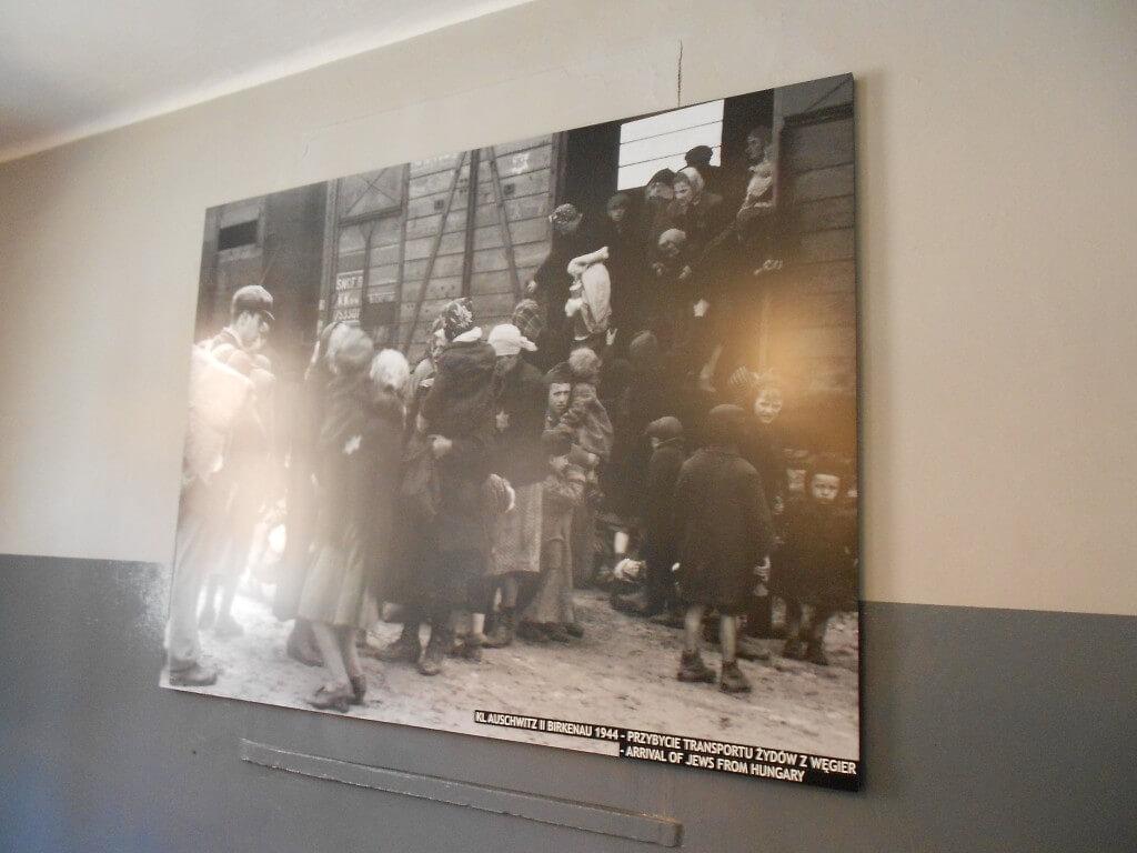 電車で輸送 アウシュビッツ強制収容所 クラクフ ポーランド