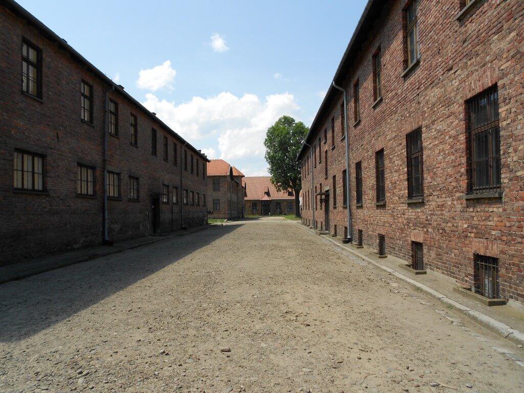 医者は権力を振りかざし、若い女性を集め人体実験、ひどい事 アウシュビッツ強制収容所 クラクフ ポーランド