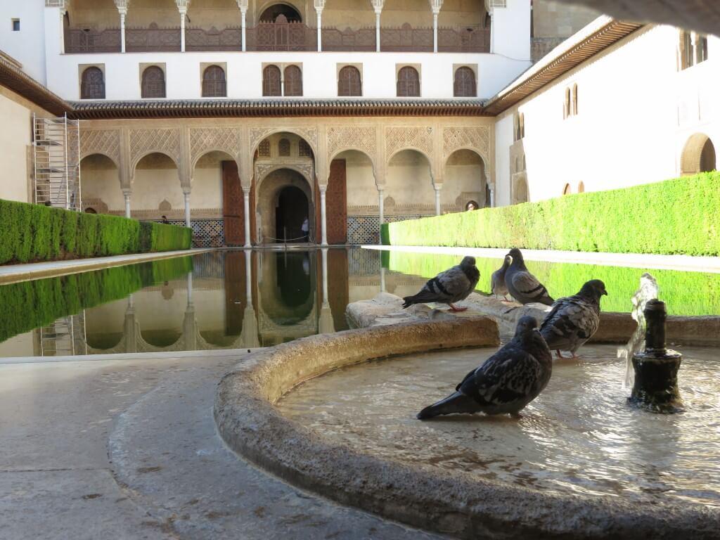 庭園 ナスル朝宮殿 アルハンブラ宮殿 グラナダ