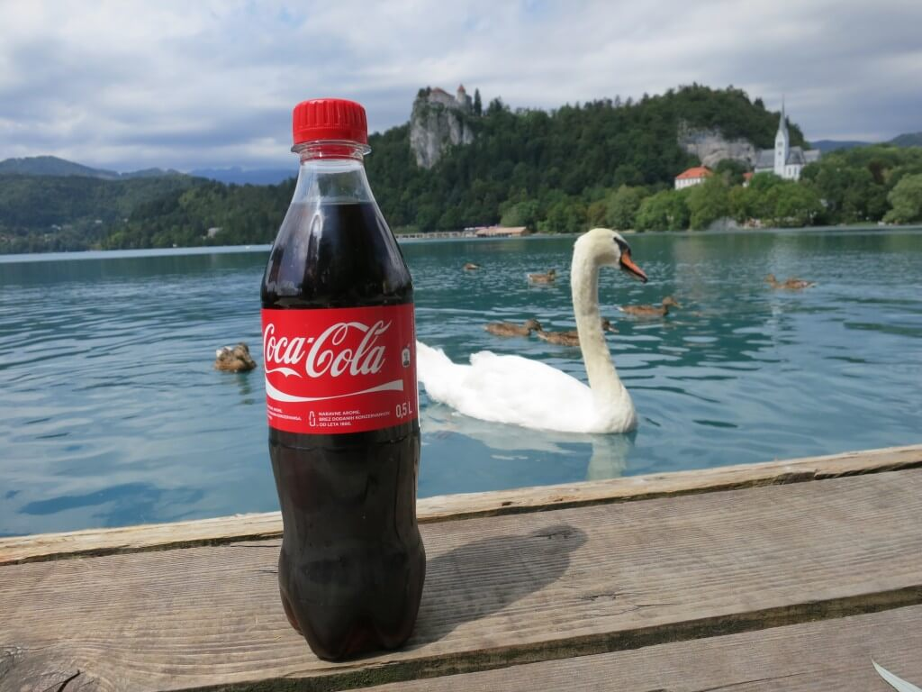 今日のコーラ ブレッド湖の凶暴な白鳥と