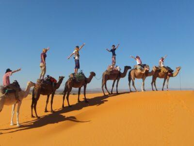 モロッコのサハラ砂漠ツアー!大砂丘に満天の星空と天の川は必見!