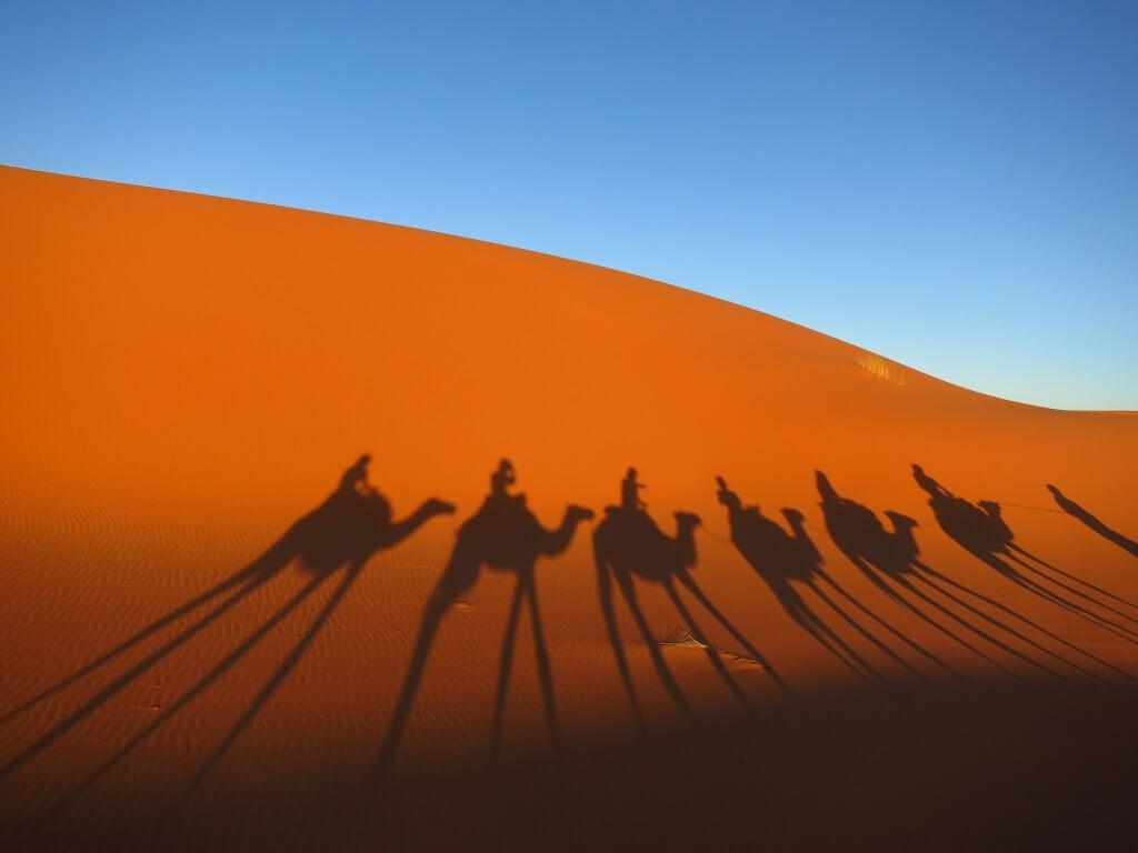 サハラ砂漠 ラクダシルエット メルズーガ モロッコ