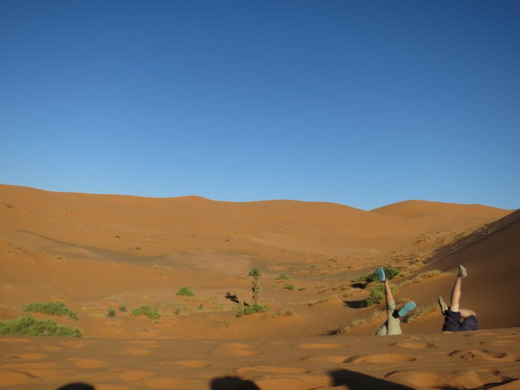サハラ砂漠ツアーのキャメルサファリ。天の川も見れて最高のツアーです!