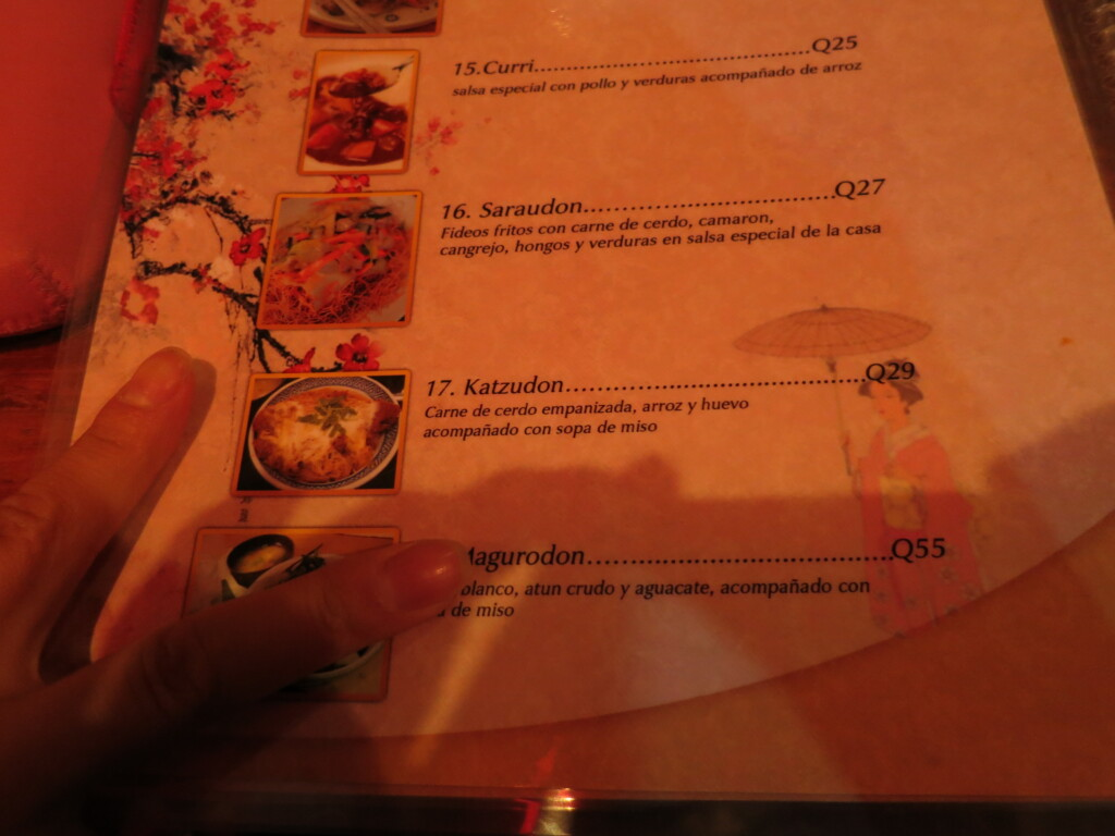 まとめ 日本食が恋しくなったらシェラのからかさで食べてみてね