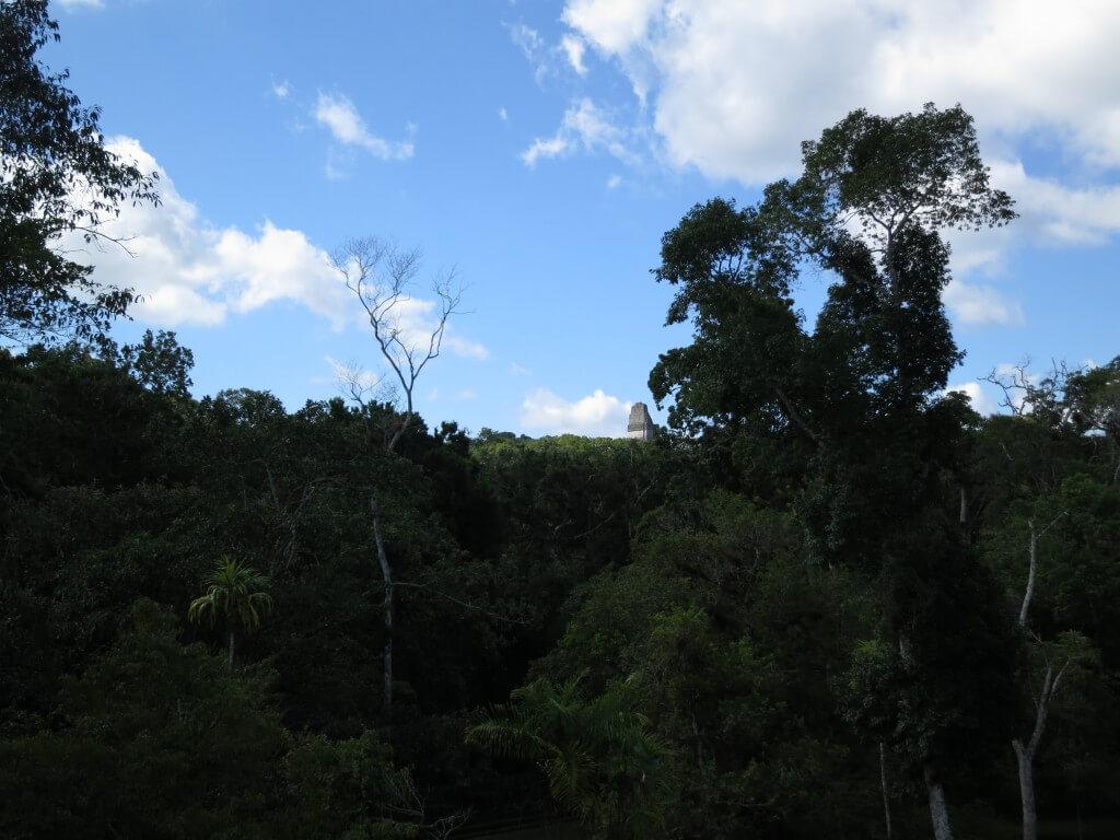 ティカル遺跡 ピラミッド 登れる グアテマラ