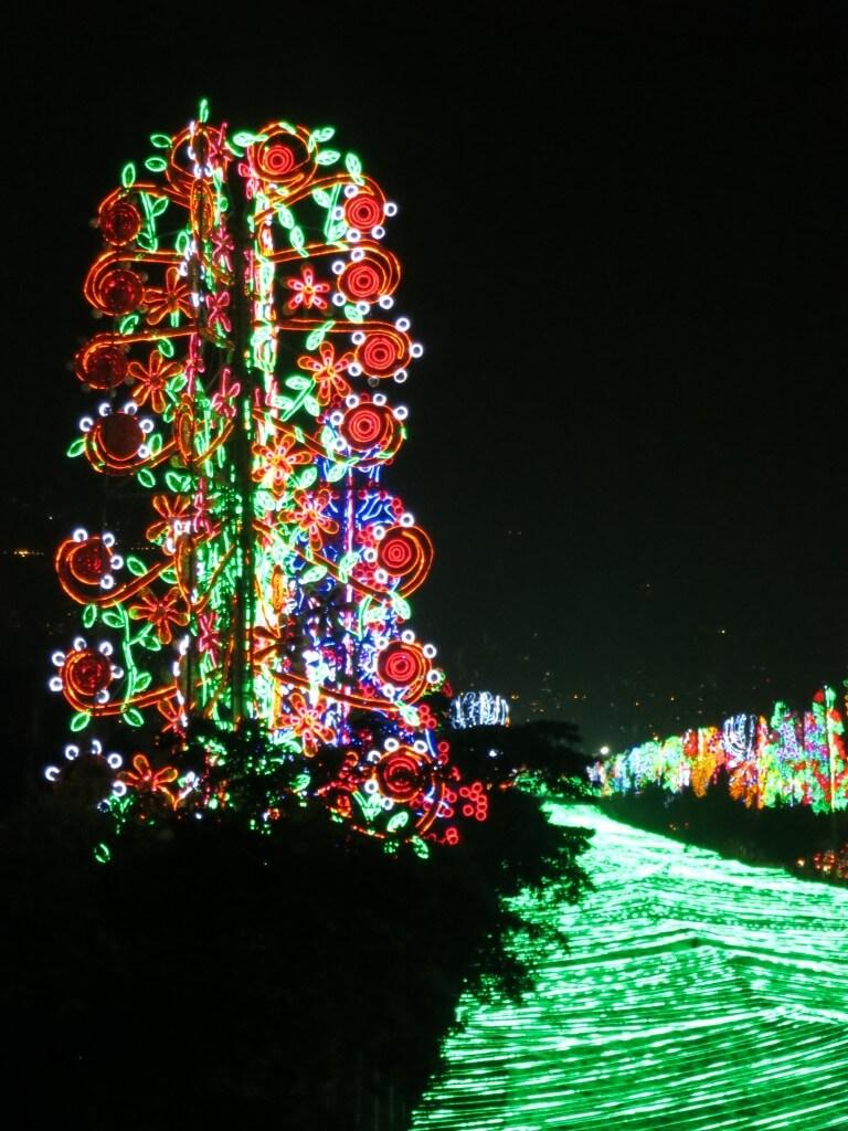 メデジンのクリスマスイルミネーションはキレイすぎる!!毎年テーマがあるんですよ!