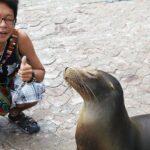 サンタクルス島のプエルトアヨラの観光で初めて行く人が知りたい治安や物価は?