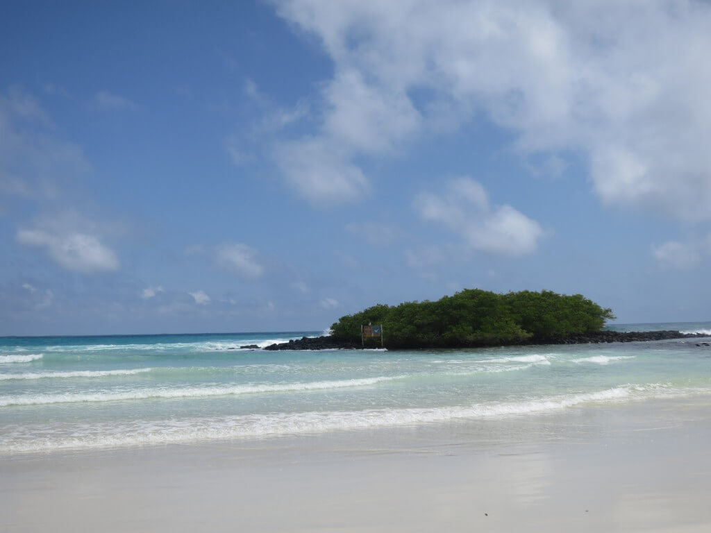 playa punta estrada(パラヤ プンタ エストラーダ) サンタ・クルス島 ガラパゴス諸島