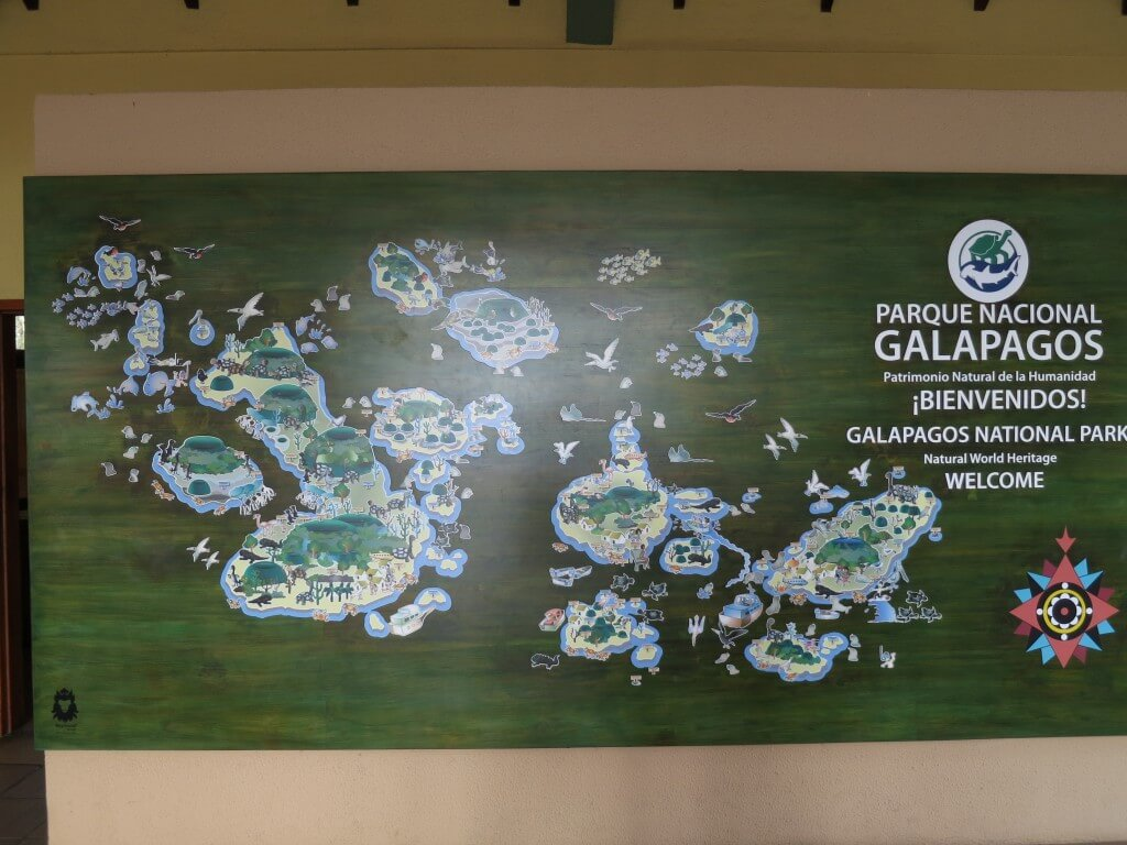 ガラパゴス諸島といったらガラパゴスゾウガメ!ダーウィンの進化論へ迫れ!