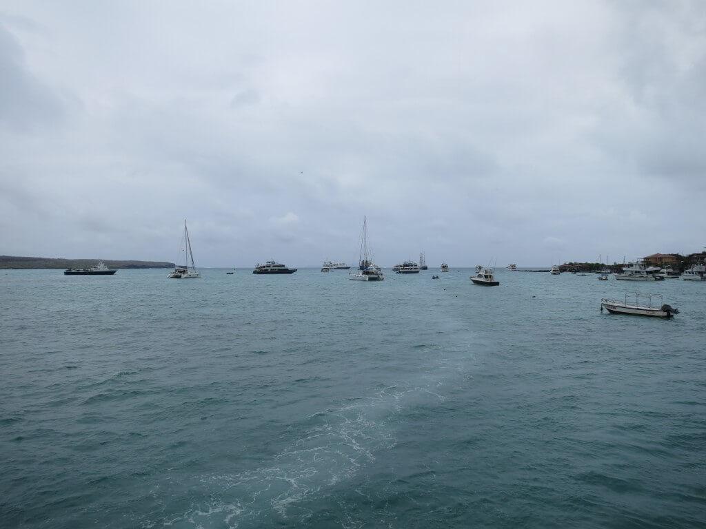 ガラパゴス諸島は大物が見れるダイビングのスポットだらけ!!サンタ・クルス島のゴードンロックでハンマーヘッドシャークを見たいんだ!