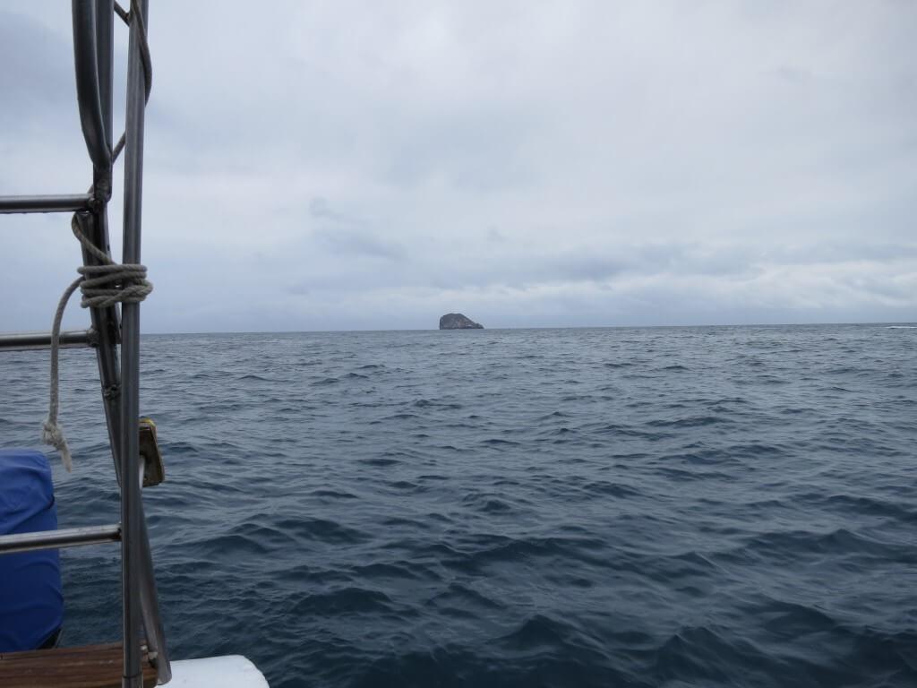 サンタ・クルス島のゴードンロックでダイビング!ヤバイ!死ぬ(笑)