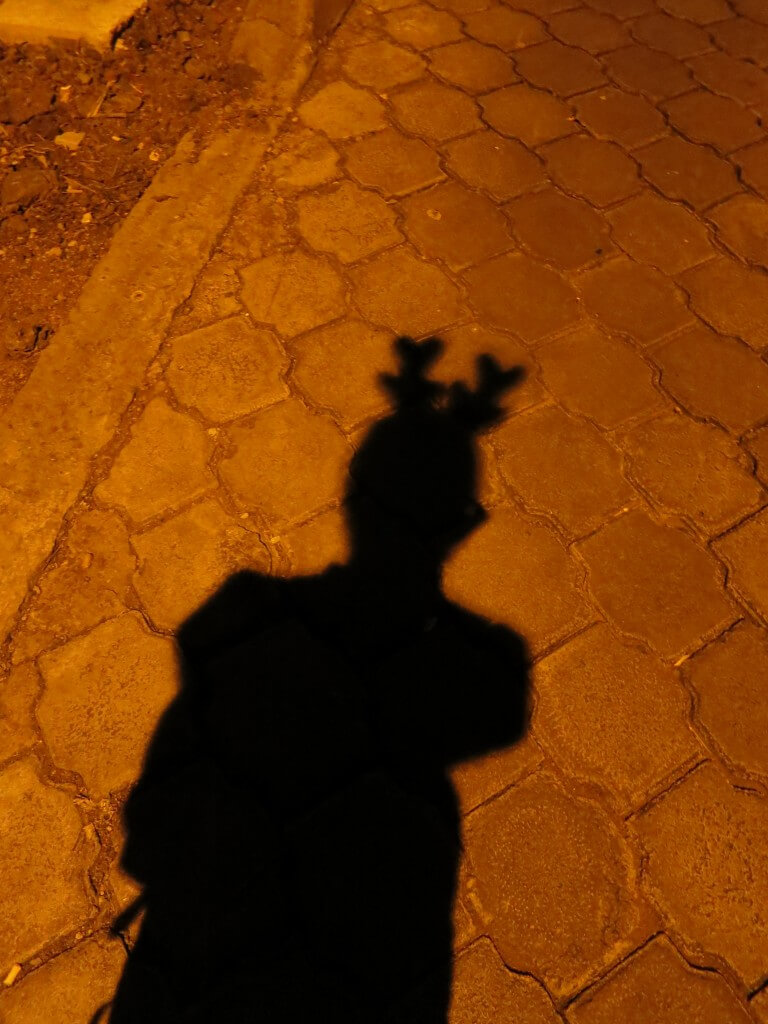 35歳のクリスマスイブはガラパゴス諸島のサンタ・クルス島でトナカイの耳をつけていました!
