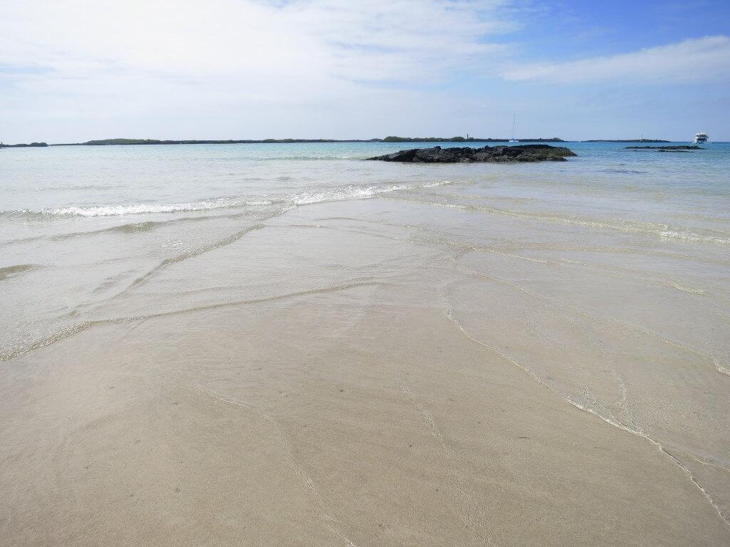 イサベラ島はどこでもガラパゴスアシカと一緒になれる!