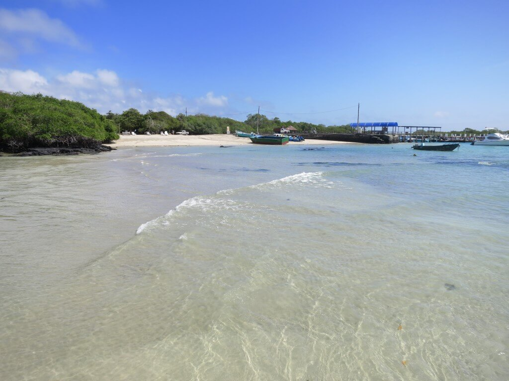 ガラパゴス諸島の島々を結ぶ連絡船は・・・ジェットコースター!!