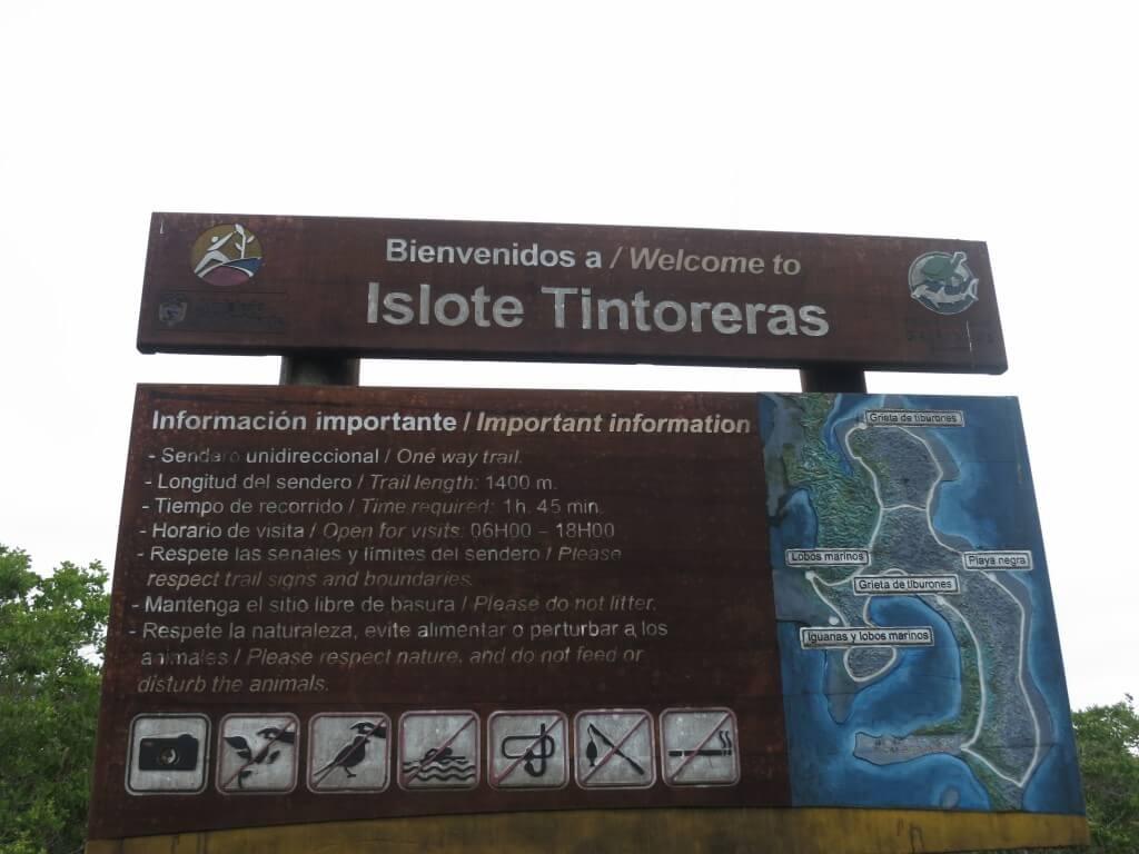 Las Tintorerasツアー開始!アシカにウミイグアナだらけですが!?