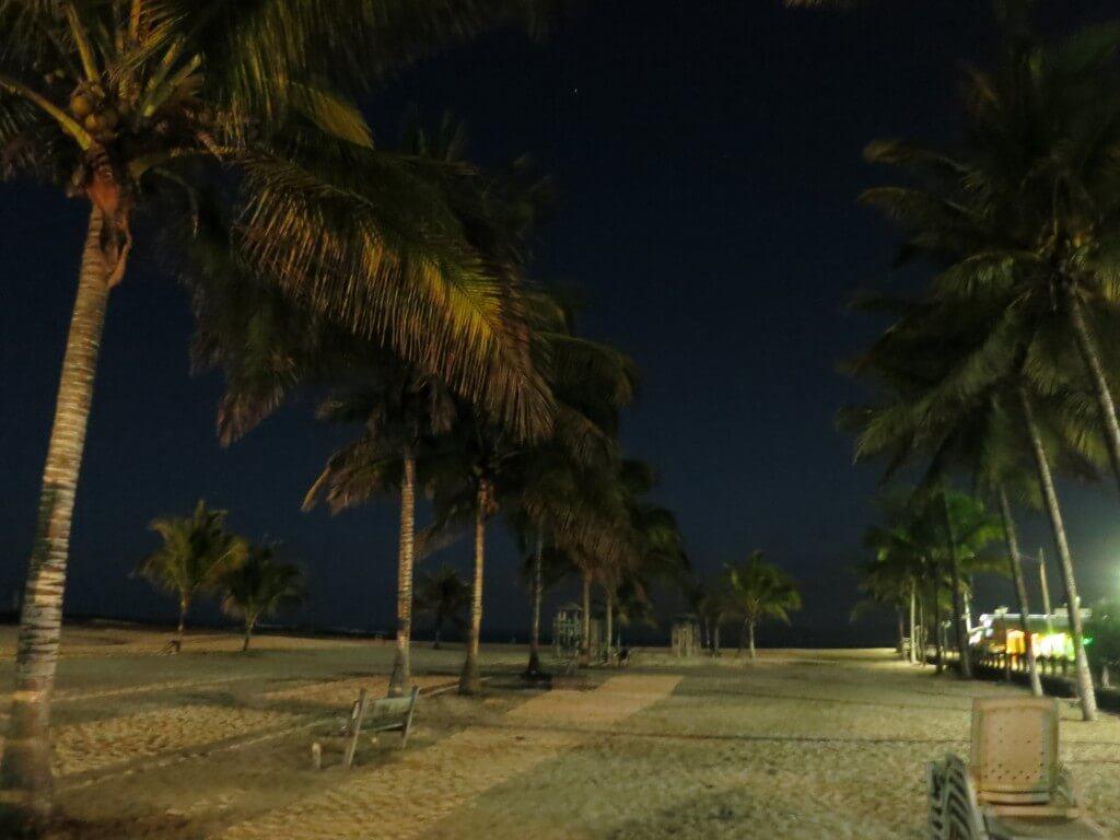 イサベラ島 ガラパゴス諸島