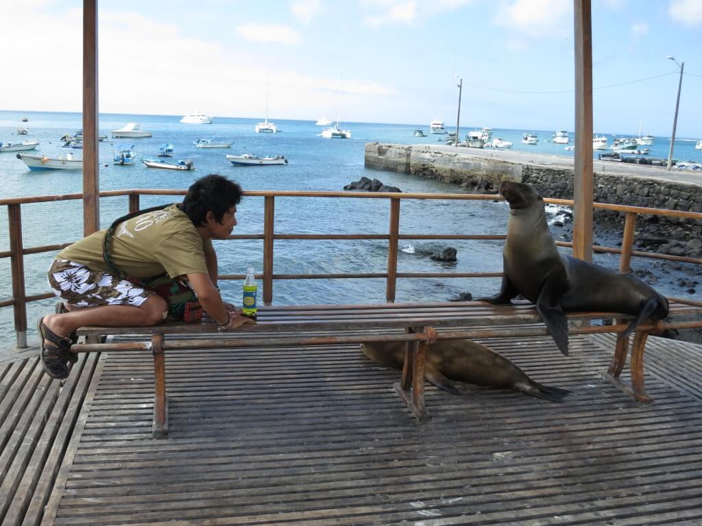 サンタ・クルス島からサン・クリストバル島へ!元旦初日から世界一周恒例ハプニング!
