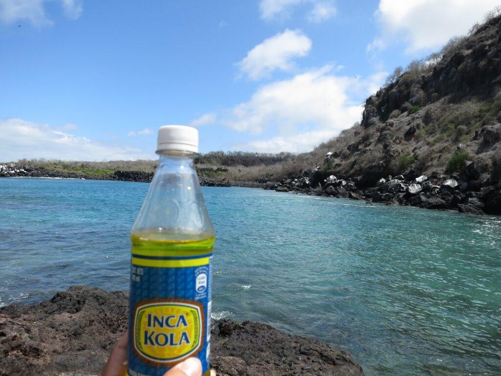 今日のコーラ いつかガラパゴス諸島リベンジや!