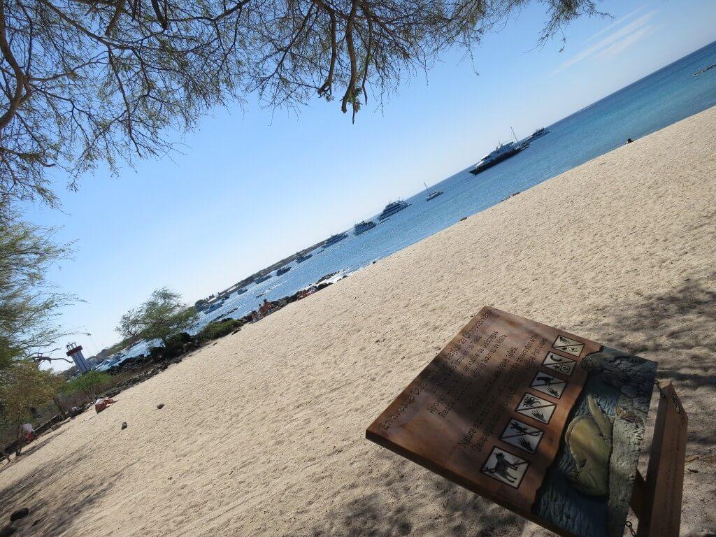 サン・クリストバス島シュノーケリングポイント Playa Mann