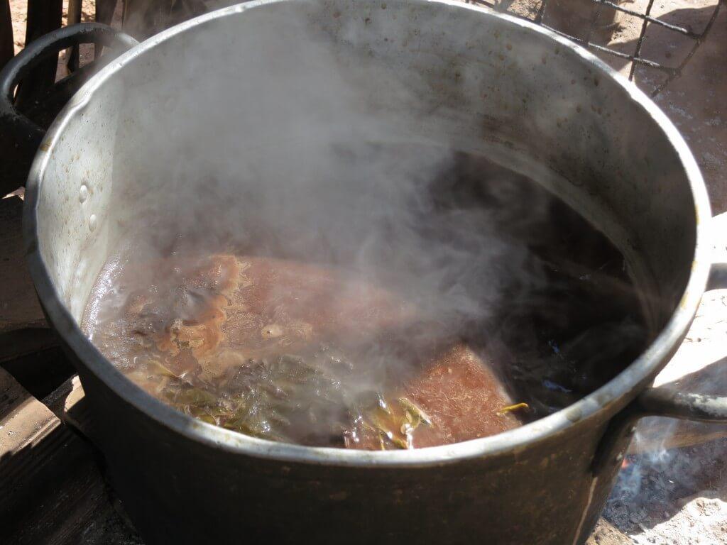 アヤワスカ シャーマン 茶色い液体 サン・フランシスコ村 ペルー