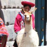 ペルーのクスコの観光でおすすめのスポット!インカの石組みは絶対に驚くほど精密だった