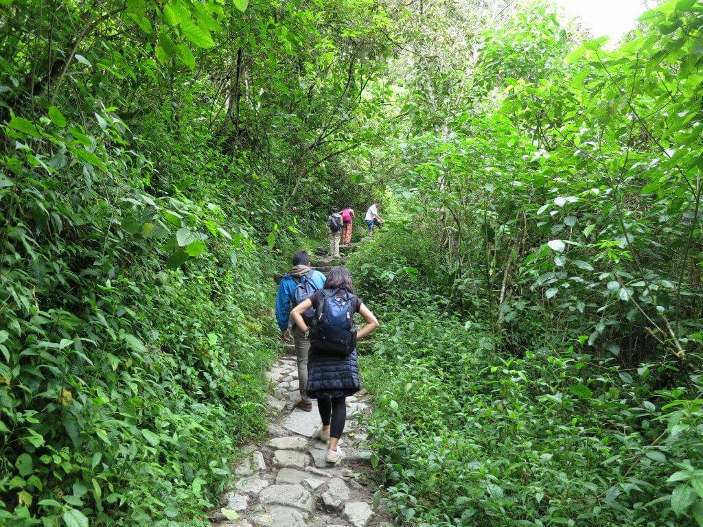 マチュピチュ遺跡 登山道 トレッキング