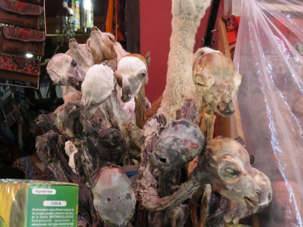 ボリビアお土産!ラパスの「Calle linares通り」で媚薬に惚れ薬のお土産なんていかが!?