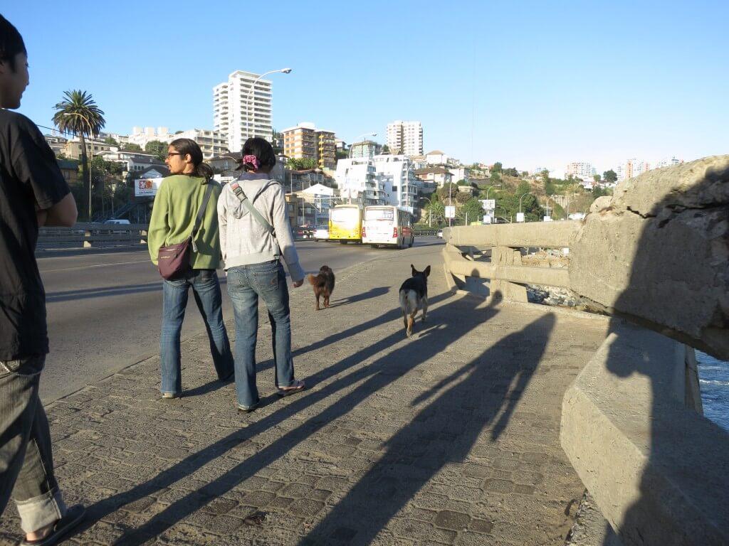 ビーニャ・デル・マル 魚市場 チリ