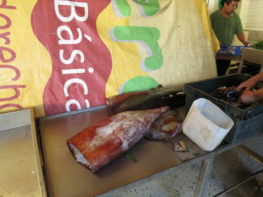 ビーニャ・デル・マル 魚市場 イカ