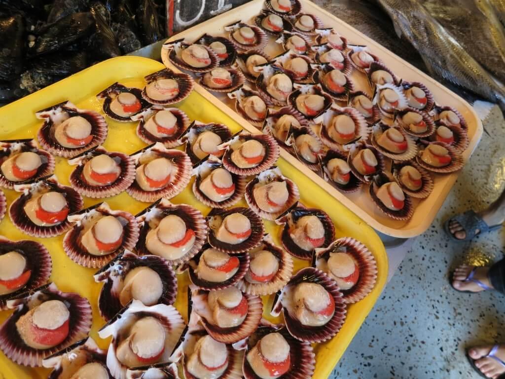 ビーニャ・デル・マル 魚市場 チリ ホタテ