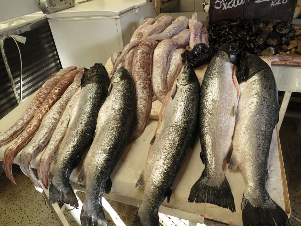 ビーニャ・デル・マル 魚市場 チリ サーモン アナゴ