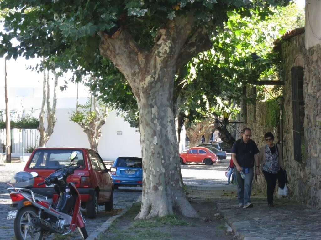 コロニア・デル・サクラメント ウルグアイ 観光 街並み