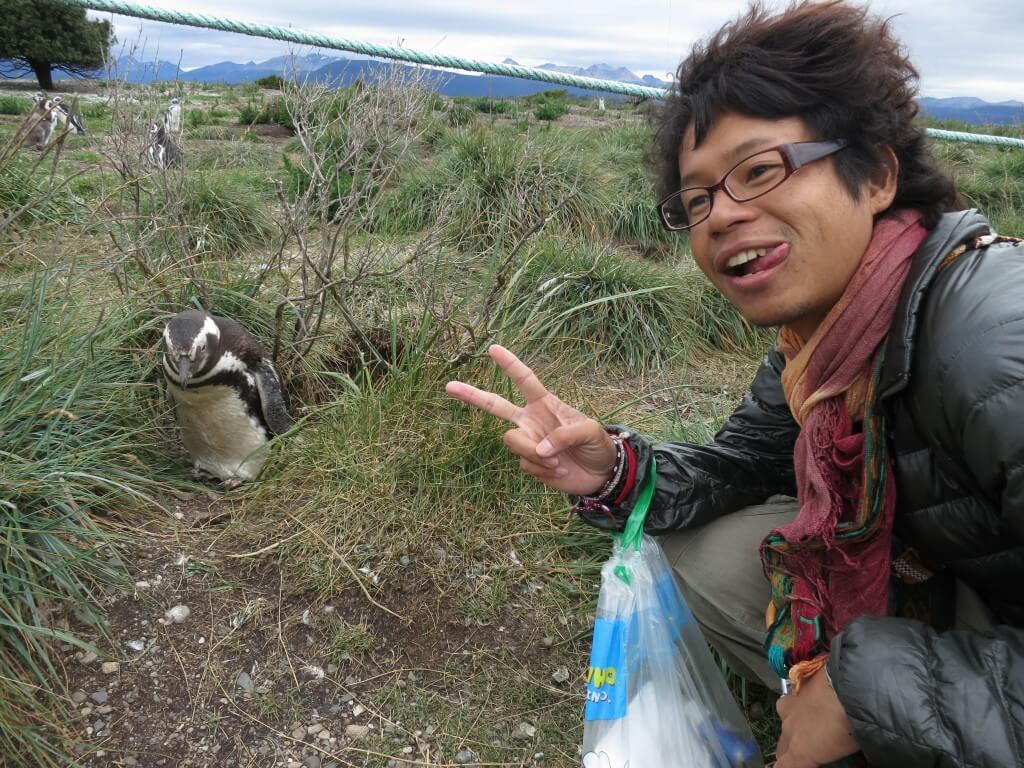 近い マゼランペンギン ペンギン島 PIRA TOUR ビーグル水道ツアー ペンギン ウシュアイア パタゴニア