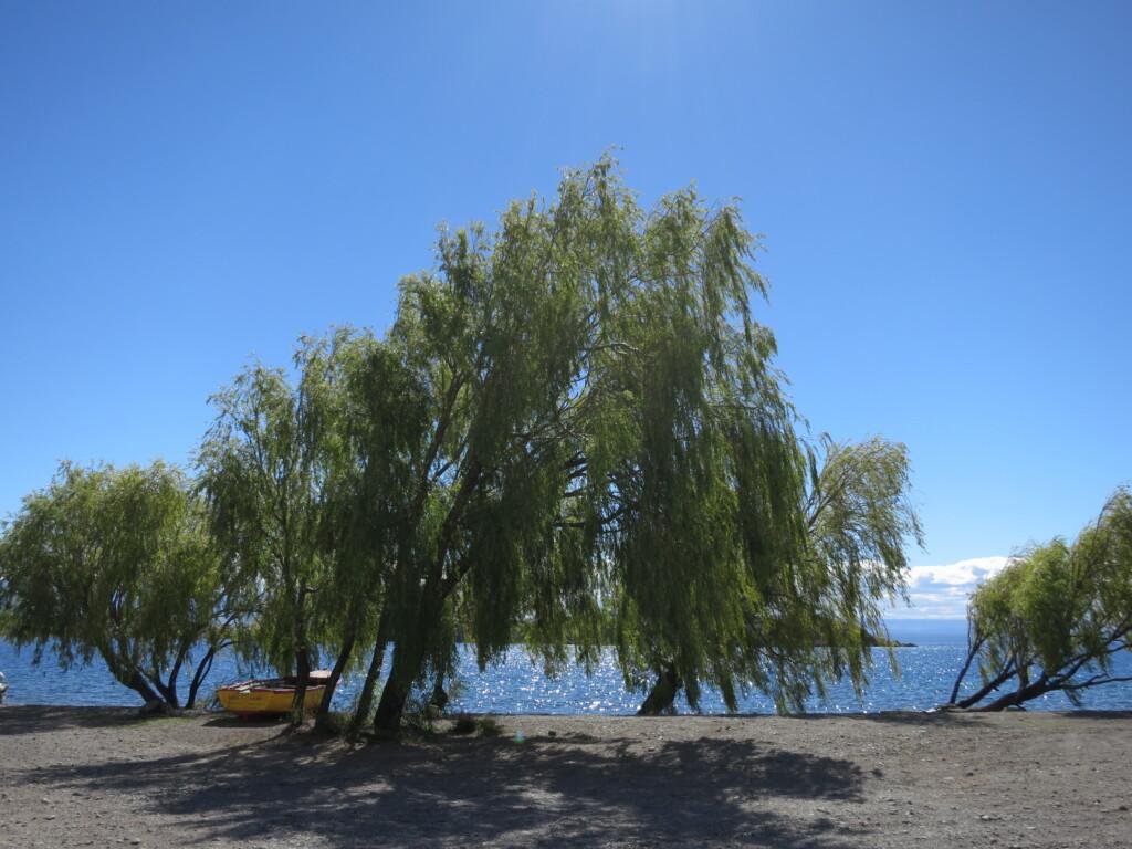 チレチコ 湖