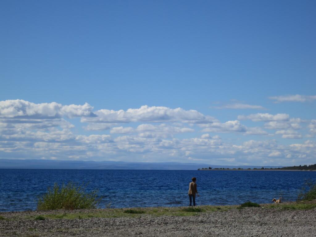 チレチコ 湖 犬 キレイなお姉さん