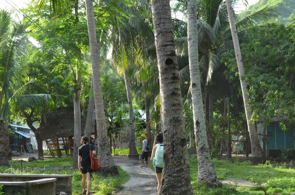 フィリピン アポ島 田舎町 風景