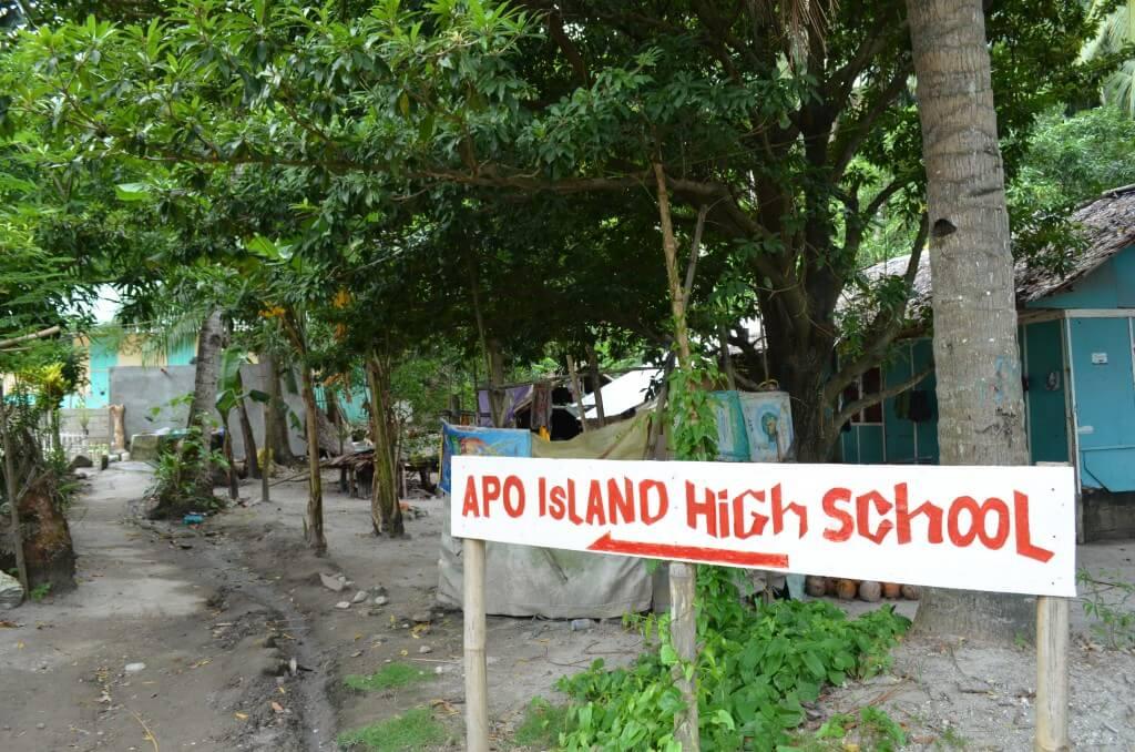 アポ島 のどか フィリピン