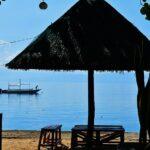 セブ島のモアルボアルの行き方は?ダイビングやシュノーケリングでも楽しめるよ