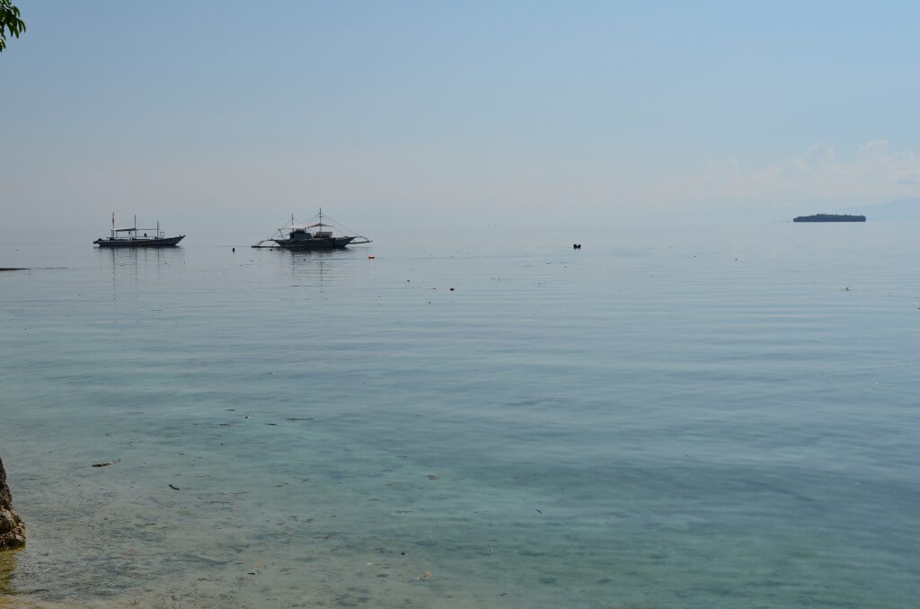 セブ島でダイビングをするならモアルボアル・マラパスクア・アポ島がおすすめ