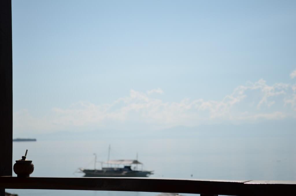 セブ島モアルボアルのダイビングは時期によってはジンベイザメやニタリ(オナガザメ)が見れる!?