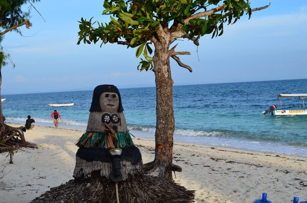 マラパスクア島のニタリザメダイビングの内容や料金